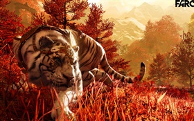 Far Cry 4, tigre blanc HD Fonds d'écran