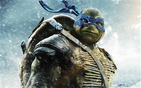 Teenage Mutant Ninja Turtles, Leo HD Fonds d'écran