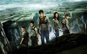 The Maze Runner, affiche de film HD Fonds d'écran