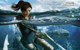 Tomb Raider: Underworld, Lara Croft HD Fonds d'écran