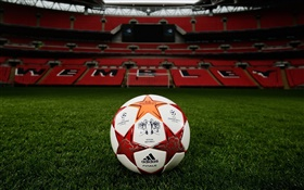 Football, Ligue des Champions, terrain en herbe, stade, Wembley HD Fonds d'écran