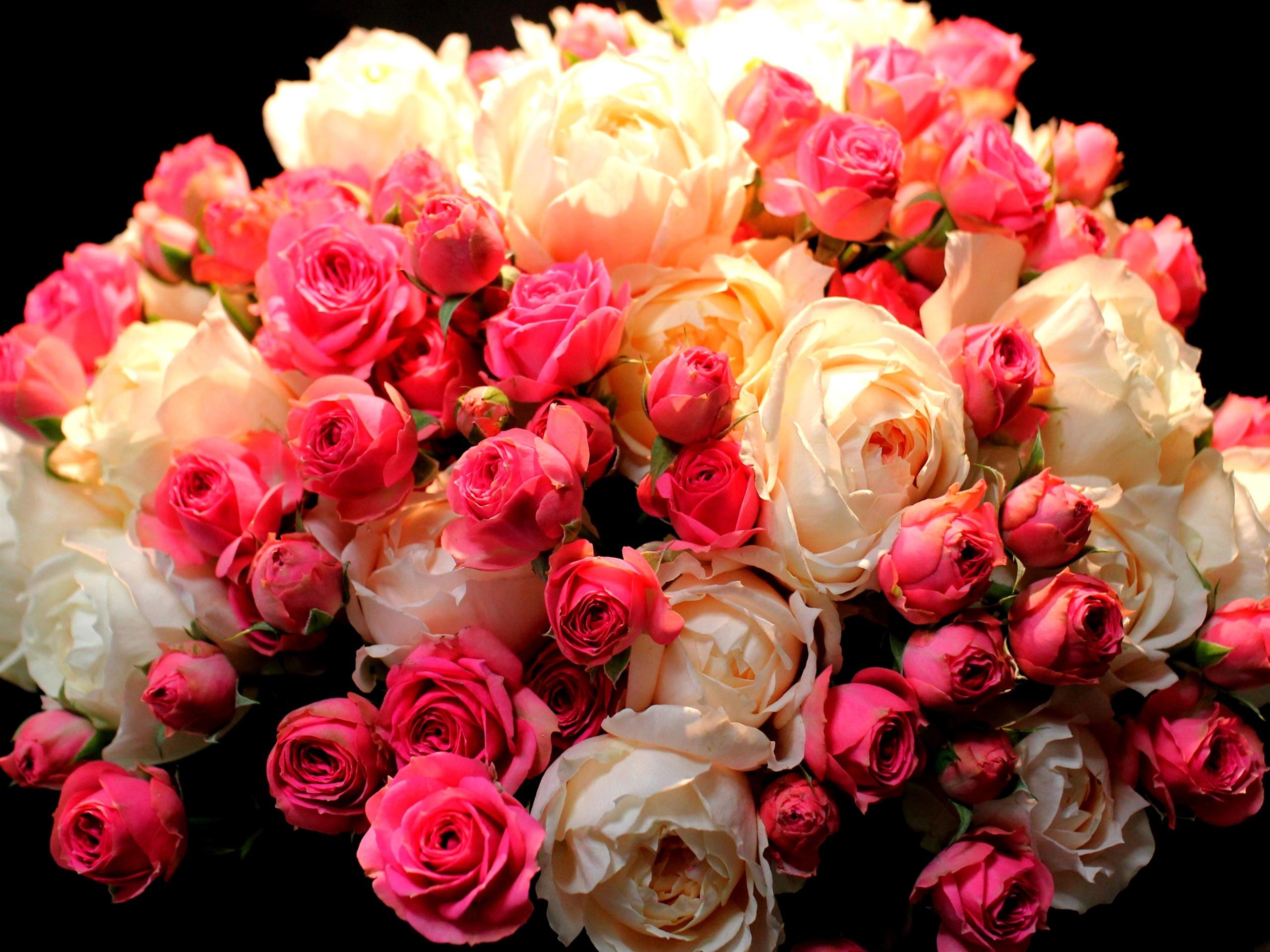 Bouquet fleurs rose rouge et blanc fonds d 39 cran for Bouquet de fleurs hd