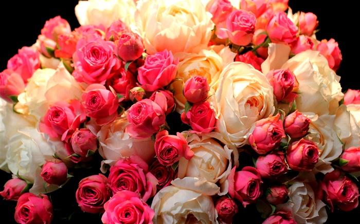 Bouquet Fleurs Rose Rouge Et Blanc Hd Fonds D Ecran Fleurs Fond