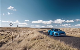 Audi R8 V10 voiture bleue, nature, herbe, route