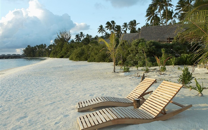 Beach, chaise, palmiers, tropical Fonds d'écran, image