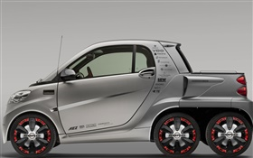 Rinspeed Dock-Go voiture Smart